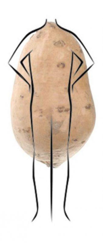 Potato Shape Body Type